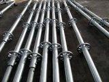 Échafaudage de système de Ringlock de matériau de construction à vendre (FF-0014)