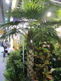 부채꼴 야자수 4.8m의 인공적인 플랜트 그리고 꽃