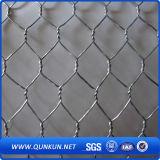 Treillis métallique hexagonal plongé chaud de qualité