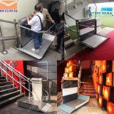Elevatore dell'interno domestico della scala degli elevatori per l'uomo anziano