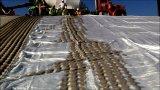 Geotextile Polyproplen Dewatering Geotube для крена реки