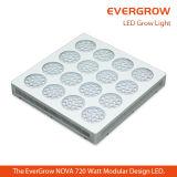 Le nova égal 240X3w des HP 1000watt hydroponique élèvent la lumière