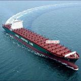 Frete de mar internacional do serviço de Logisticas de Shenzhen/Shanghai/Ningbo/Xiamen, China a Auckland/Nova Zelândia