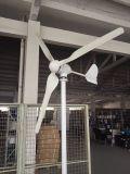 Generador de turbina horizontal de viento de la alta calidad 800W para el uso casero