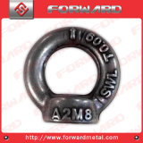 Noix de levage de levage d'oeil de la flèche DIN582 de noix d'oeil modifiée par baisse de l'acier inoxydable Ss304