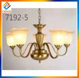 Lampadario a bracci chiaro moderno decorativo dell'interno del LED per il salone