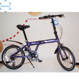 Heißes Sale 7speed Steel Folding Bike/Bicycle