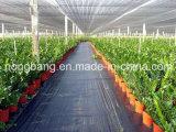 Estera anti de los PP Weed del plástico de la estera de la barrera del control de Weed de la tela de la cubierta de tierra del jardín