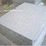 G654 China Impala Bush Hammered Granite Floor Tile