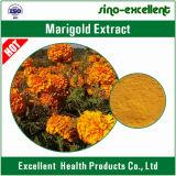 100% natürliches Ringelblume-Auszug-Lutein