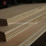Tarjeta de la madera contrachapada