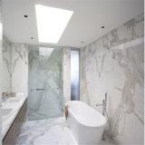 Marmo dell'Italia Calacatta, disegno di marmo bianco di Calacatta e bianco di marmo del pavimento