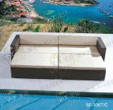 Jeux extérieurs de sofa, meubles de rotin de patio, jeux de sofa de jardin (SF-306)