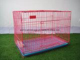 Qualitäts-preiswerte Eisen-Zaun-Hundehundehütte-faltender Hunderahmen
