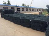 Galvanisiert und PVC Coated Gabion