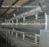 Gaiola automática da galinha de grelha da galvanização (tipo de H)