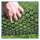 Engranzamento do plástico da proteção da grama