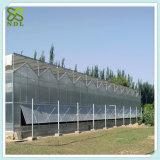 중국 태양 Hydroponic 취미 플라스틱 온실