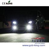 Lámpara auto de la niebla del poder más elevado LED (60watts, H11)