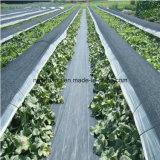 Tela material nova da paisagem do controle de Weed