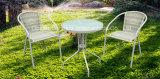 Jeu de café extérieur de table ronde de loisirs