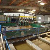 Categoría alimenticia del alginato del sodio/grado de la materia textil/grado industrial/grado de Pharma