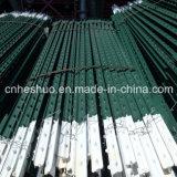 미국 Market를 위한 베스트셀러 10 FT Black Varnished Steel Posts