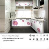 Module de cuisine populaire de modèle de fleur (FY0548)