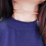 Het Europese Goud van de Legering van de Stijl/de Zilver Geplateerde Halsband van de Nauwsluitende halsketting van de Juwelen van de Manier
