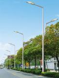 Migliore indicatore luminoso di via solare di prezzi 7m Palo 50W LED