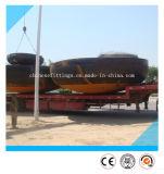 """"""" L'ANSI 64 ricopre gli accessori per tubi capi ellissoidali del acciaio al carbonio"""