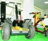 Offroad Grote Mobiliteit van het Vuil van de Autoped van het Saldo van het Wiel 19inch 1600W Elektrische