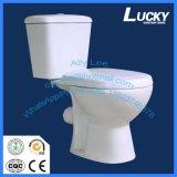 Высокая эффективность хозяйственная удваивает полный Wc туалета P-Traptwo-Части