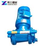 Pompe Dipower-Actionnée entraînée par un moteur électrique de Diaphram de pompe de membrane d'air pour le produit pétrochimique