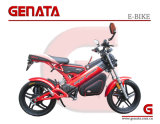 Storage Battery EEC Folding Electric Bicycle (GM890E)