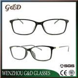 Optische Frame van het Oogglas Eyewear van Ultem van de manier het Plastic met Slank Roestvrij staal B7053