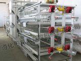 Cage de élevage automatique de couche pour le matériel de volaille