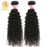 волна новых волос бразильянина Remy 100% девственницы изготовления Xuchang цены по прейскуранту завода-изготовителя прибытия 7A-Grade профессиональных курчавая