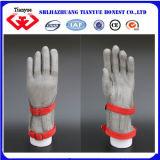 Anti gants de sûreté de boucle de découpage d'acier inoxydable (tyb-0055)