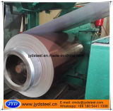 Farbe galvanisierte Stahlring mit Plastik-Beschichtung zu Uzbekistan