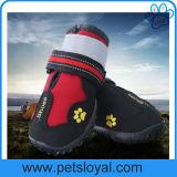 Chaussures résistantes de crabot de l'eau avec la semelle antidérapage raboteuse de Velcro r3fléchissant