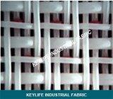 capa doble de 8 y 16 ejes que forma el alambre inferior para la fabricación de papel de tejido