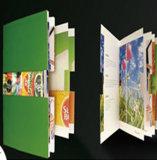 Documento di arte lucido di alta qualità che fa pubblicità al foglio di Promo dell'aletta di filatoio A4