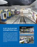 Elevador residencial ahorro de energía de la buena calidad del ahorro de espacio de FUJI