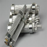 ASTM standard AAC All Aluminum Conductors pour Distribution Lines
