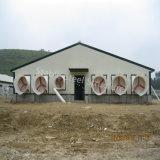 Dirigir do edifício de exploração agrícola fácil da galinha da construção de aço do conjunto da fábrica