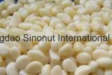 塩水のニンニク片(塩辛い: 8-15%、20-22%)