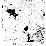Pellicola di stampa di trasferimento dell'acqua di Hydrographics di spurgo di Yingcai