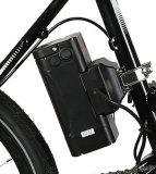 Bici eléctrica de la ciudad de la batería de litio con el motor de la diversión 8