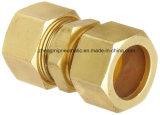"""Montaggio di tubo d'ottone dei metalli, unione, 3/4 """" di compressione di X 3/4 """""""